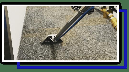 Professional Carpet Cleaning Sandgate